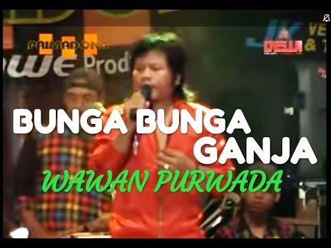 Bunga Bunga Ganja - Wawan Purwada - Music By PRIMADONA MUSIC DANGDUT JEPARA