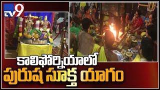 Video Male signature pooja at Livermore Shiva Vishnu temple || Bay Area - TV9 MP3, 3GP, MP4, WEBM, AVI, FLV Februari 2019