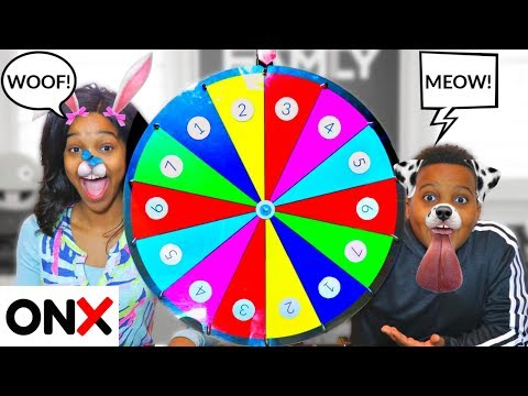 MYSTERY WHEEL OF FUNNY ANIMALS!  - Onyx Kids