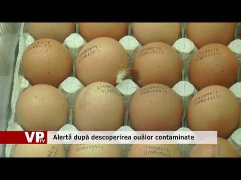 Alertă după descoperirea ouălor contaminate