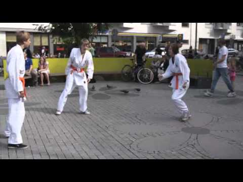 Flashmob Jujutsu Kai 25 aug 2012. Älvsjö ju-jutsuklubb