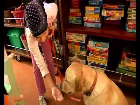 Anteprima Video Pet Therapy presso Ospedale Pediatrico Meyer