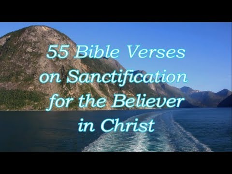 Bible quotes - 55 Bible Verses on Walking with Christ [Audio Bible Scriptures]