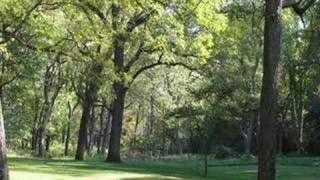 <b>Doc Watson</b>  Shady Grove