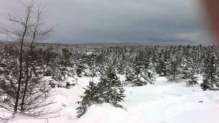 9. Tundra Extreme 2011 Ski-doo