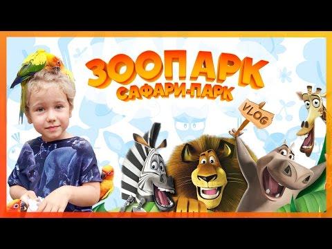 VLOG: Идем в зоопарк. В поисках героев из мультика Мадагаскар. Смешные животные. (видео)