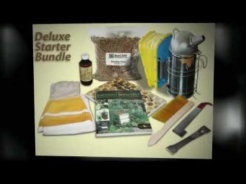 Bee Equipment – Bee Equipment for Beginning Beekeepers