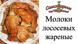 b0_bQevpk_U