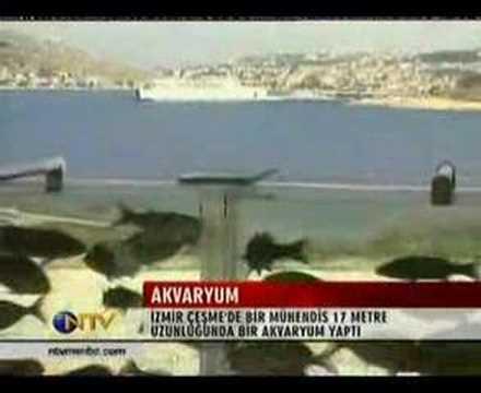 這位土耳其富豪花了66萬將圍墻改建成「靈動水族館」,和水族館相連的地方居然是這裡!