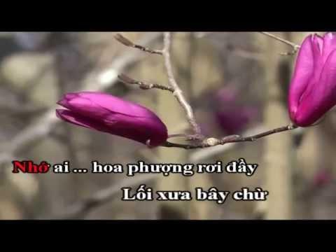 Miền Trung Yêu Dấu Đan Trường Karaoke Beat Chuẩn - Thời lượng: 5:10.