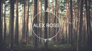 image of DJ Snake Ft. Bipolar Sunshine - Middle (Alex Ross Remix)