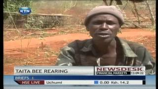 Bee Farmers In Taita Taveta County Are Now Looking For Alternative Sources Of Livelihood