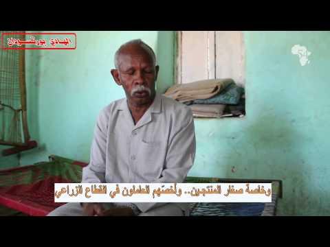 مشروع الجزيرة: الحقيقة والوهم