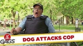 Dog Attacks Cop