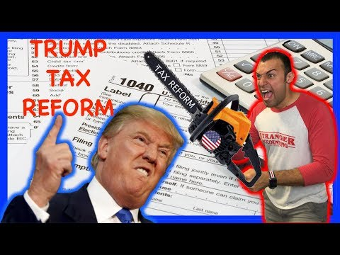 The Truth of Trump's Tax Reform Explained Tax Cuts For America Donald Trump Toucha The IRS Spaghet!