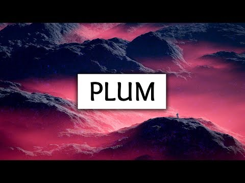 Video Troye Sivan ‒ Plum (Lyrics) download in MP3, 3GP, MP4, WEBM, AVI, FLV January 2017