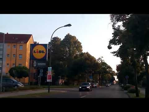 WildsauSEO Jagd in Leipzig-Raschwitz (vom 11.09.2019)