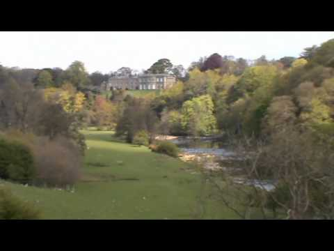 Masham River Ure Marfield Wetlands | north yorkshire  Walks
