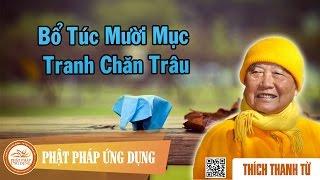 Bổ Túc Mười Mục Tranh Chăn Trâu - Thầy Thích Thanh Từ