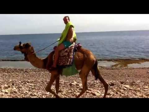 Egypt Sinai Region