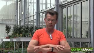 #1076 Karl Ploberger über Buchsbaumzünsler Buchsbaumpilz und Alternativen zu Buxus