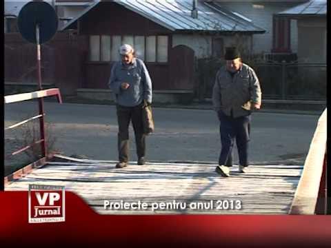 Proiecte pentru anul 2013