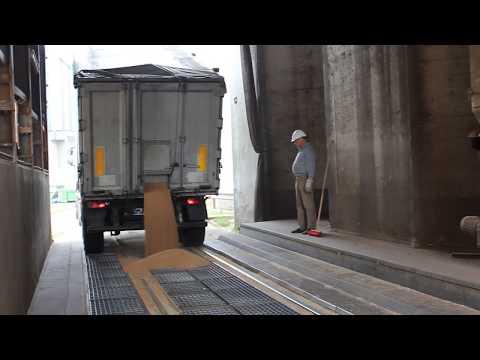 Выгрузка зерна из автотранспорта на терминале Silo P.Kruse (видео)