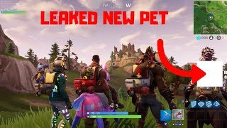 Fortnite Pets - The Cheater Made Us Custom Pets In Fortnite.. (Fortnite Battle Royale)