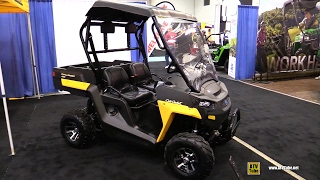6. 2017 Cub Cadet Challenger 400 Utility ATV - Walkaround - 2016 Toronto ATV Show
