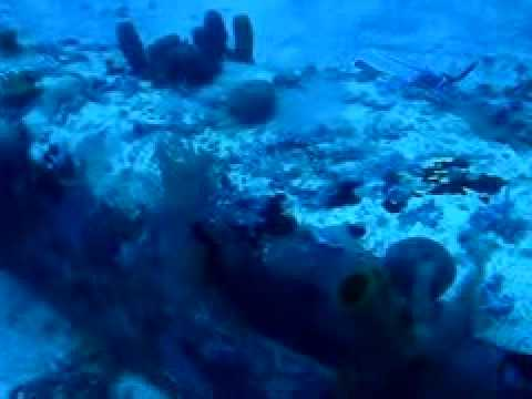 Avión hundido en aguas de Jamaica