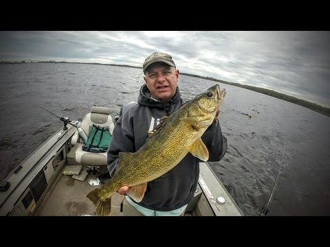 St louis river mn fishing report charlie nelson for Charlie s fishing report