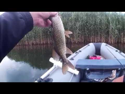 все о дорожке рыбалка