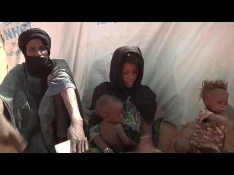 Niger: Renforcement des capacités des moyens de subsistance des réfugiés dans les camps