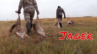 "Video Coyote Hunting Episode #8 ""Jager"" MP3, 3GP, MP4, WEBM, AVI, FLV Februari 2019"