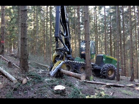 So schnell wie zehn Forstarbeiter: Harvester bei Holzernte