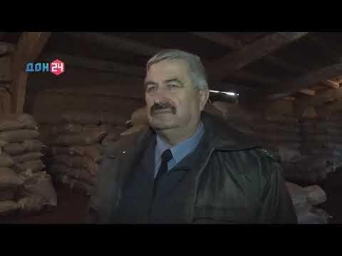 Специалисты Россельхознадзора проверяют качество семян на сортовые и посевные качества в Ростовской области