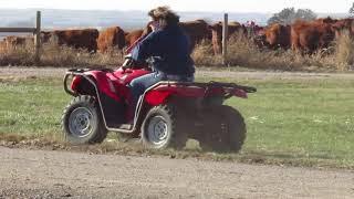 7. 2010 Honda 420 Rancher ATV