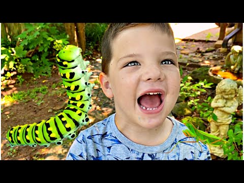 BUG HUNT AT GRANDMAS HOUSE! Catching Bugs with Caleb & Mommy Backyard Adventure!