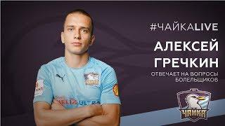 «Чайка» Live: Алексей Гречкин