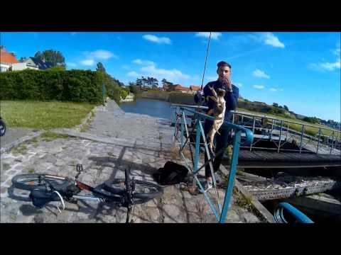 Pêche GROS crabes à la Canne