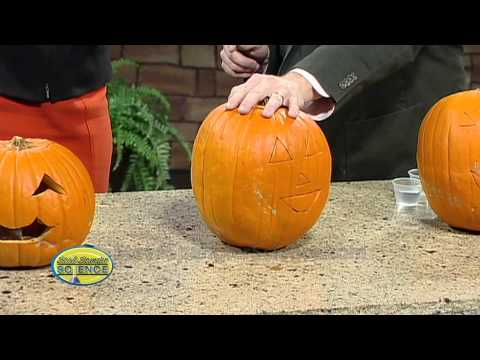 Exploding Pumpkins - Cool Science Experiment
