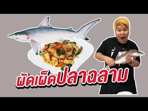 ผัดเผ็ดปลาฉลาม - เพลินพุง EP.60