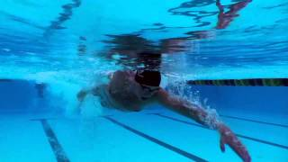Picking the Right Swimming Technique - Freestyle