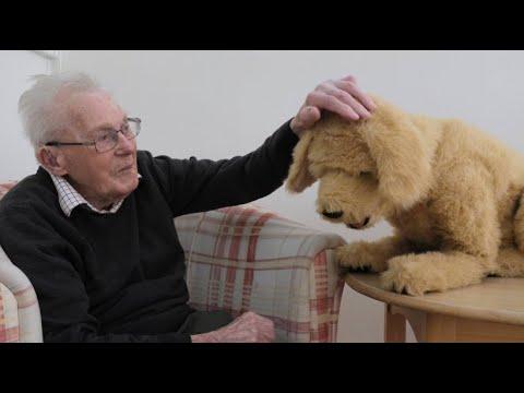 Roboter-Hund wird im Altenheim zum Hit