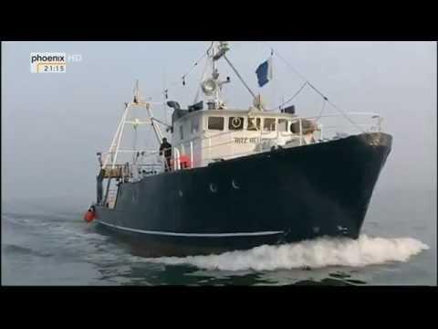 Tod in der Ostsee: Der Untergang der Steuben (Doku HD)