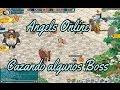 Angels Online juego Cazando Algunos Boss pegasus Antes