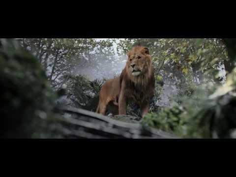 LION DU CINEMA - Animaux Cinéma et de Tournage
