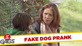 Kid Steals Blind Man's Dog !, Just for laughs, Just for laughs gags, Just for laughs 2015