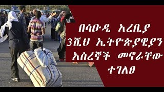 The latest Amharic News May  23, 2019
