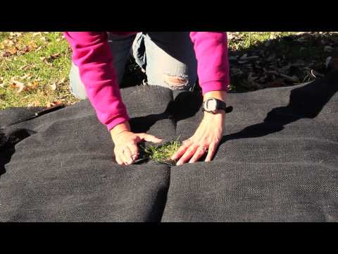 How to Plant a Garden With Fabric : Gardening Techniques